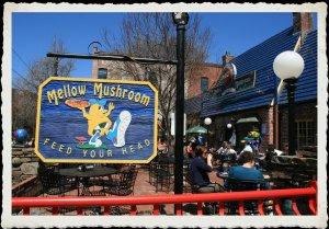 IMG_1414 Mellow Mushroom, Asheville, NC