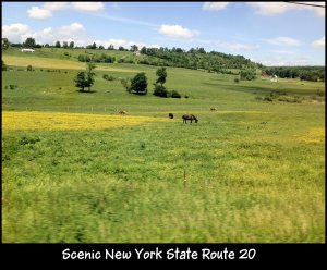 IMG_4006 scenic route 20 NY