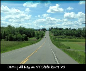 IMG_4007 Route 20 scenic