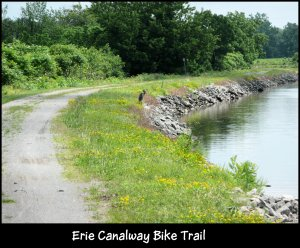 P1150900 Erie Canal Bike Trail