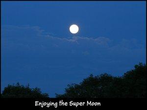 IMG_1977 Super Moon