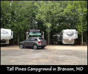 Tall Pines campsite