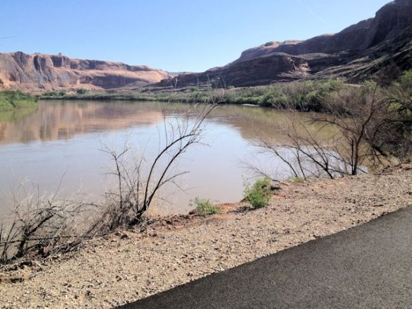 Bicycling Along The Colorado River