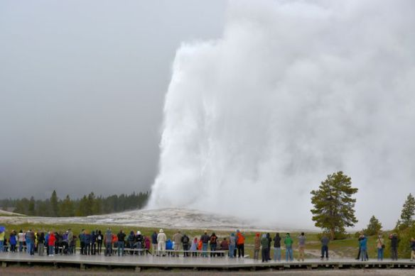Old Faithful Erupts While It's Snowing!