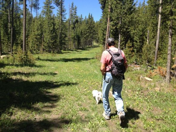 Hiking the Rendezvous Loop Ski Trail in West Yellowstone