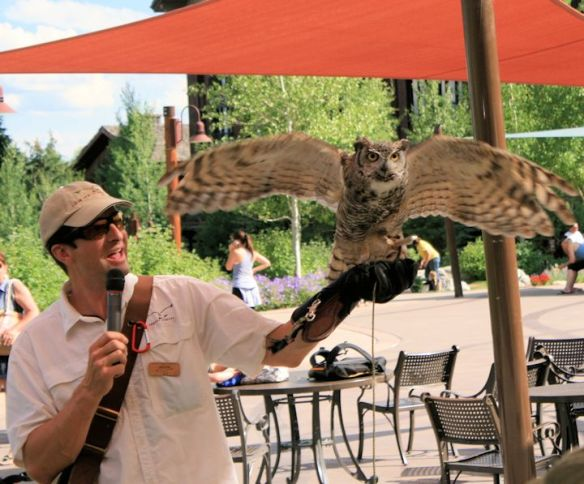 Teton Raptor Center Presentation