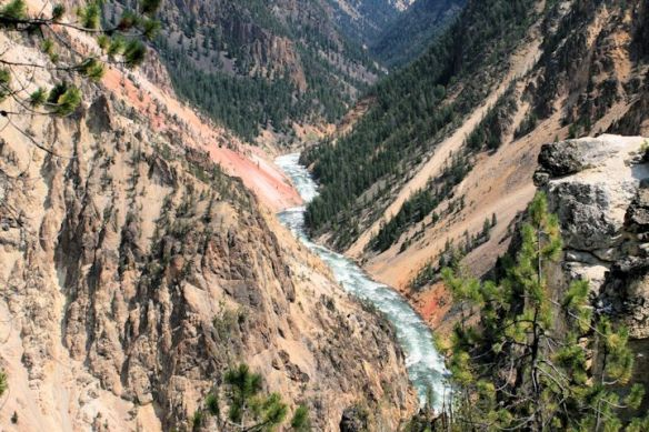 Yellowstone Canyon South Rim Trail to Clear Lake 7 Mile Hike
