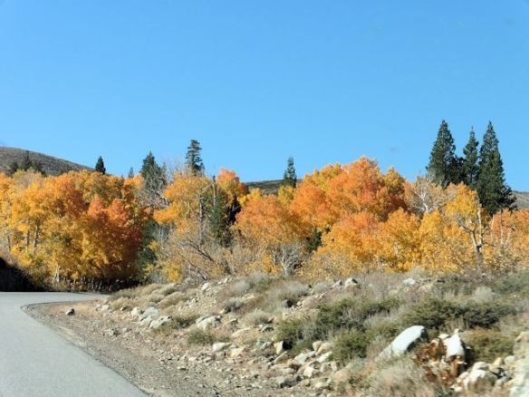 Driving to the Virginia Lakes trailhead