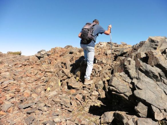 Rock scrambling is required to reach the summit at over 11,000 feet!