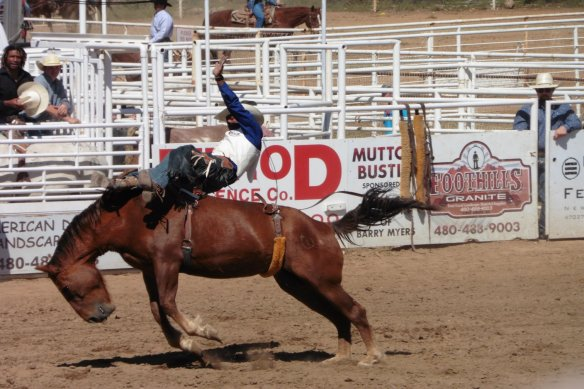 Cave Creek Rodeo AZ -  12