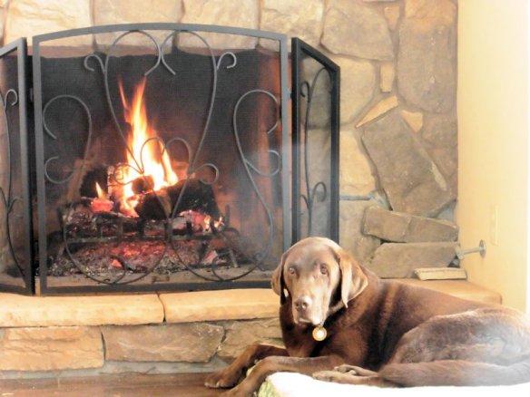 Dan built a nice fire when we got back to their Prescott home.