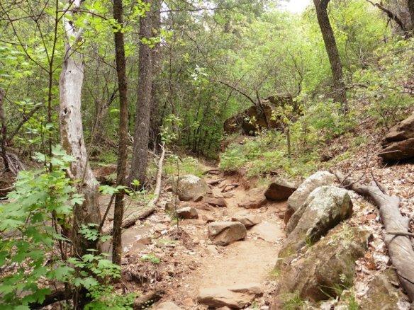 13 Sedona Boynton Trail