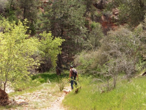 16 Sedona Girdner Trail