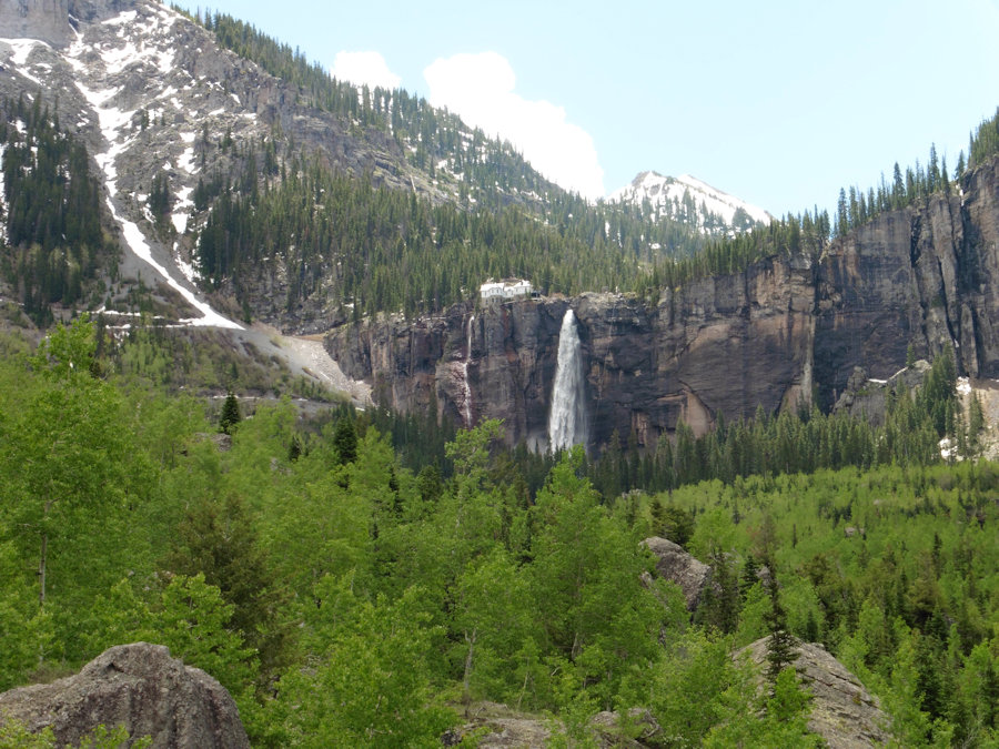 Colorado Ridgway Ouray And Telluride Bear Tracks