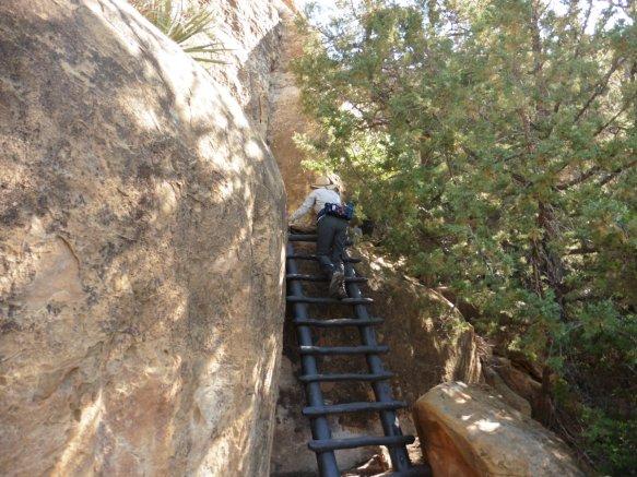 Mesa Verde National Park - Cliff Palace Ruins 3