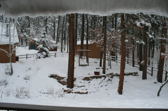 2 Backyard 5 - Covered in snow